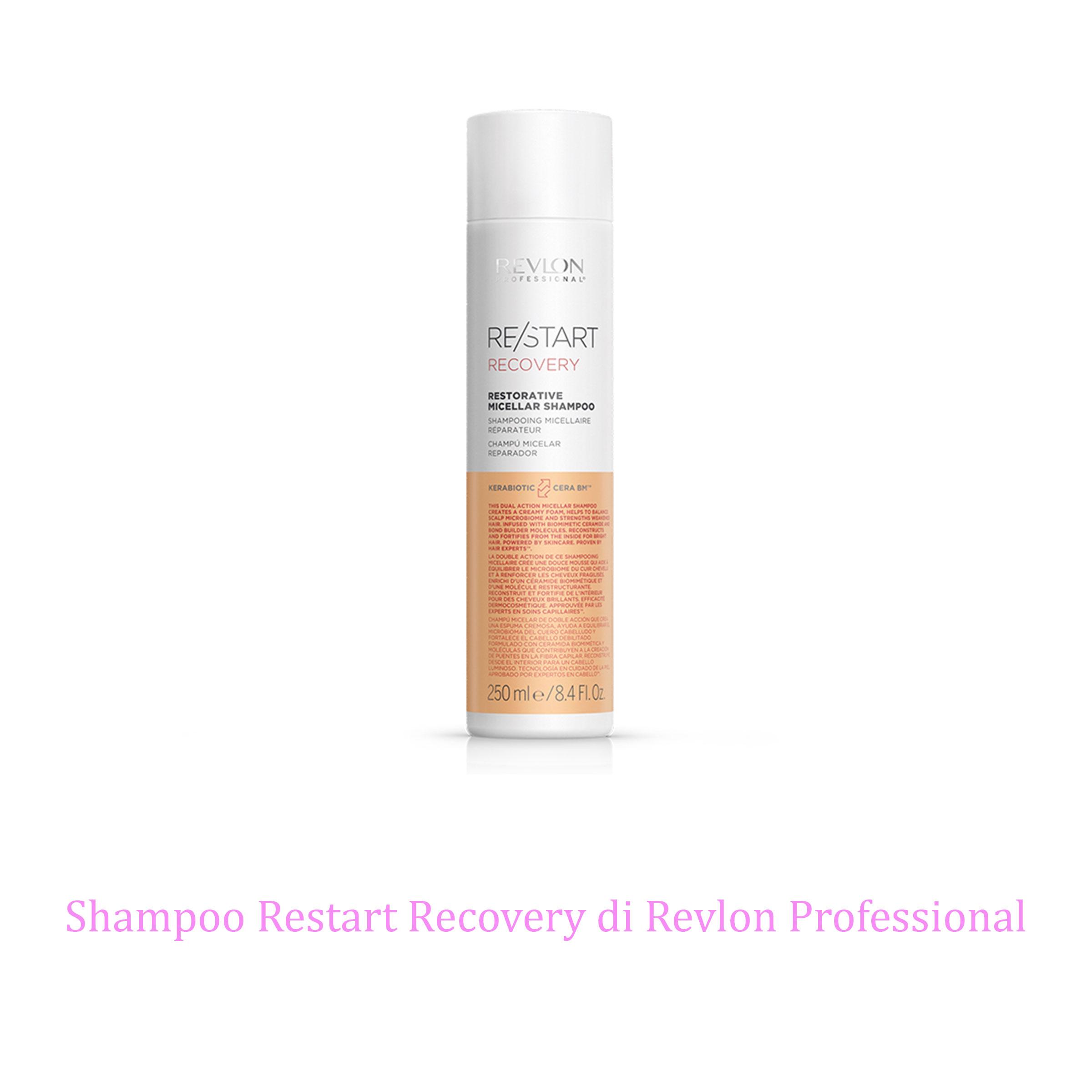 restart_recovery_shampoo